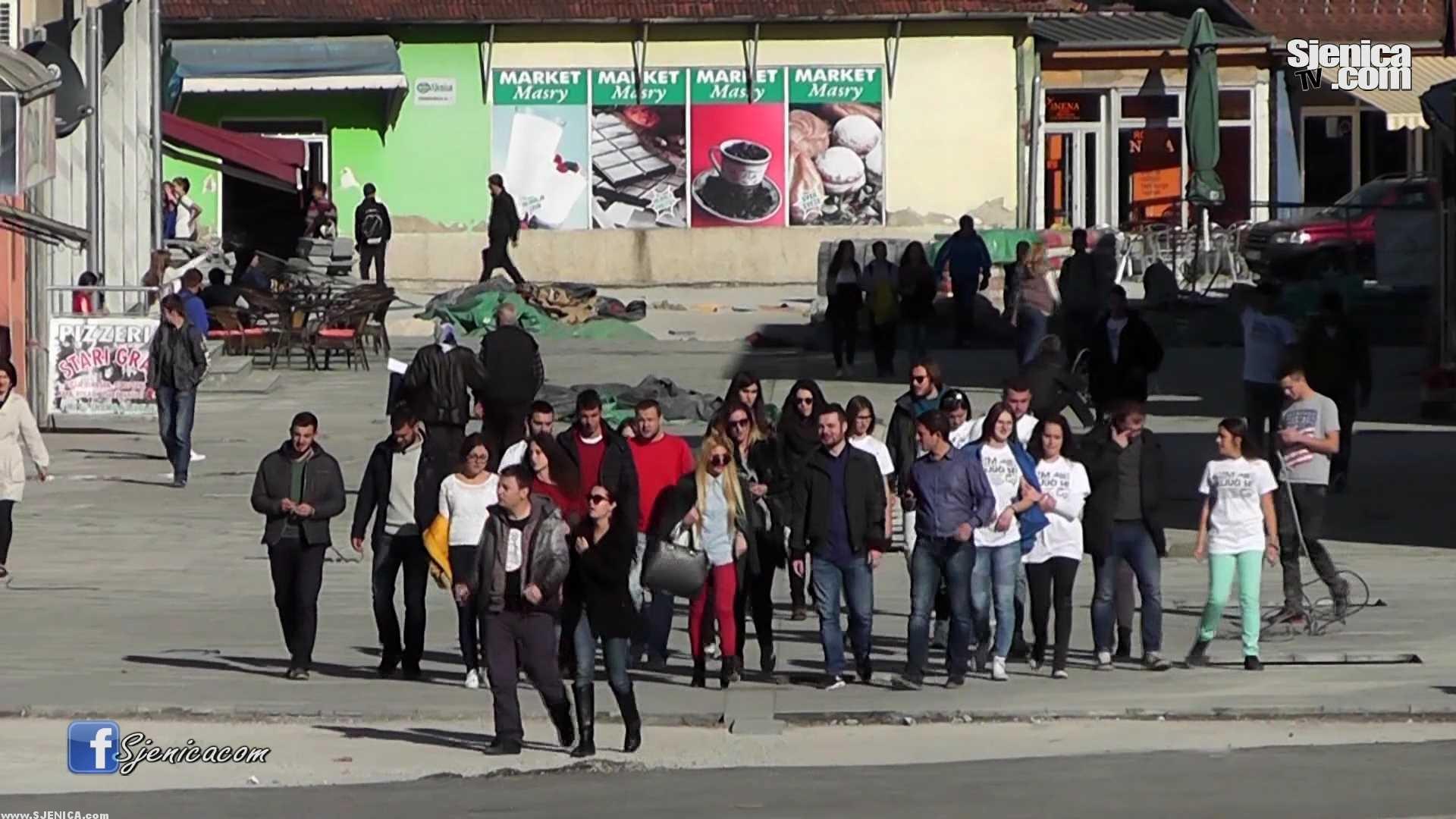 Mladi iz Zlatiborskog okruka zajedno ka boljim projektima / Sjenica / Novembar 2015