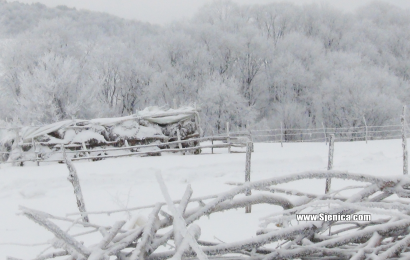 Selo u snegu - www.Sjenica.com