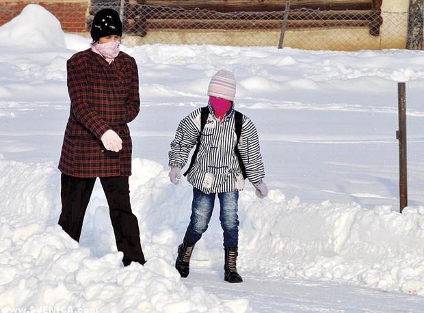 Sjenica i mraz